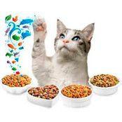 Повседневные корма для кошек