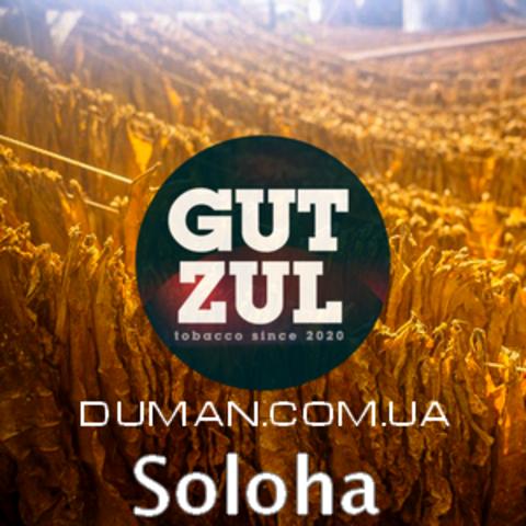 Soloha