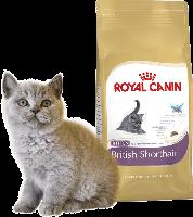 Royal Canin для кошек определенных пород