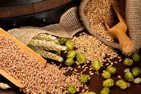Зерновое пивоварение