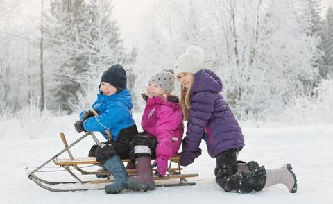 Viking Зима