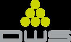 Лого DWS Systems