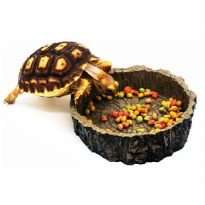 Корма для черепах и рептилий