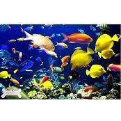 Корма для всех видов аквариумных рыб
