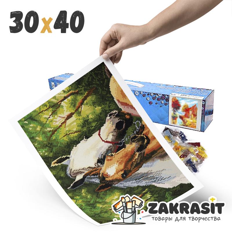 Алмазные мозаики 30х40 без подрамника