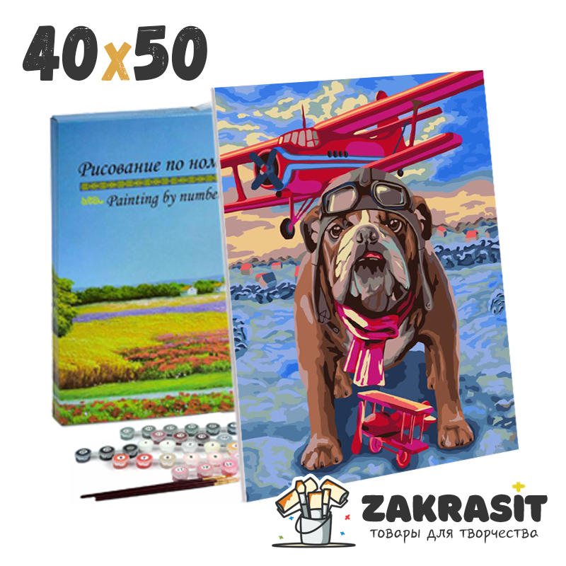 Картины по номерам 40х50