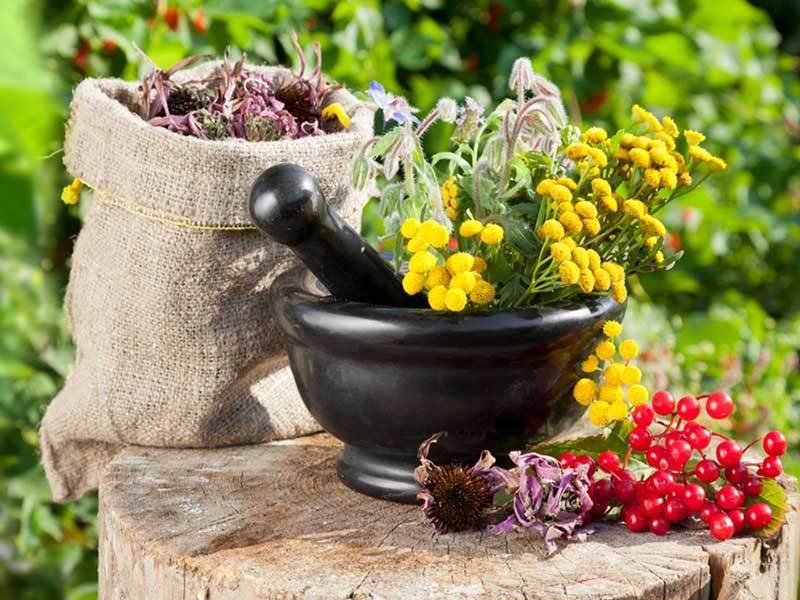 Травы и прочие добавки