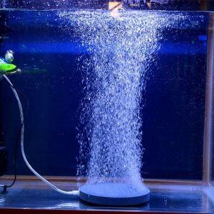 Аэрация аквариумов
