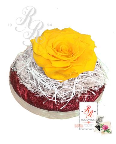 Розы стабилизированные в коробке