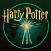 Аксессуары Harry Potter