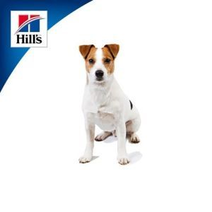 Hill's  Science Plan для взрослых собак