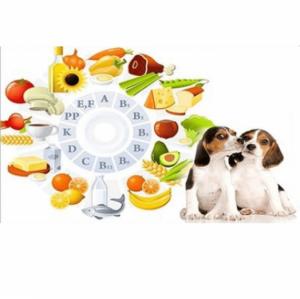 Витамины и витаминные лакомства для собак
