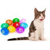 Витамины и витаминные лакомства для кошек