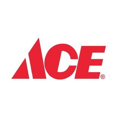ACE Paint