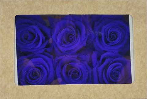 Стабилизированный Бутон Розы Optimum Flowers Standart . Цвет Синие (Диаметр 7см)
