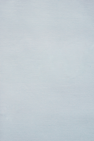 Ткань для пэчворка, хлопок 100% (арт. Al-S2637)