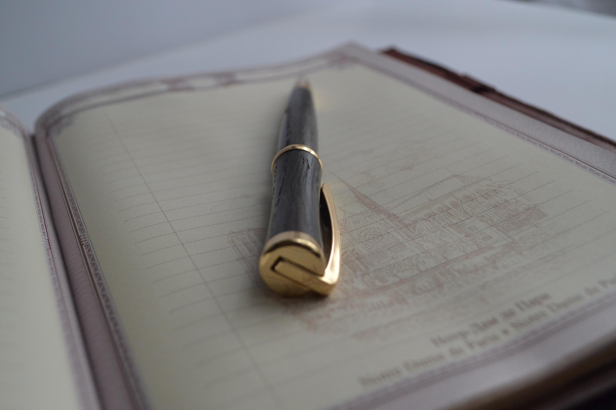 ручка с позолотой