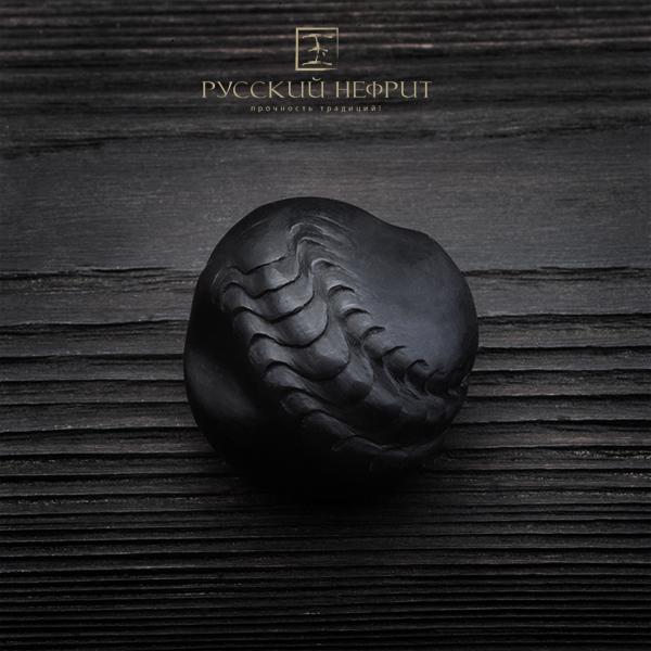 Г. Волгин Камень для медитации Scolopendrum Scolopendra.jpg