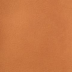 Искусственная кожа Denkart Padova plus (Денкарт Падова плюс) 13904