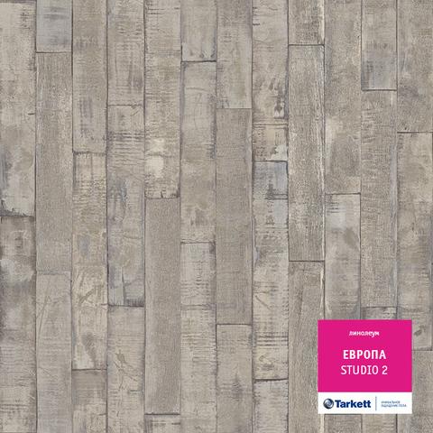 Линолеум ЕВРОПА (новинка 2015) STUDIO 2 3,5м