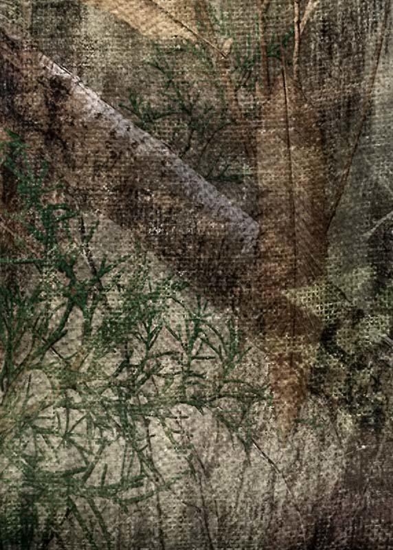 Allen Vanish - Mossy Oak Realtree
