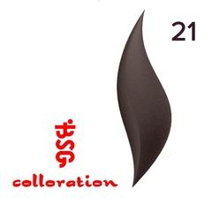 BSG Colloration, №21 Графитно-серый с розовым шимером