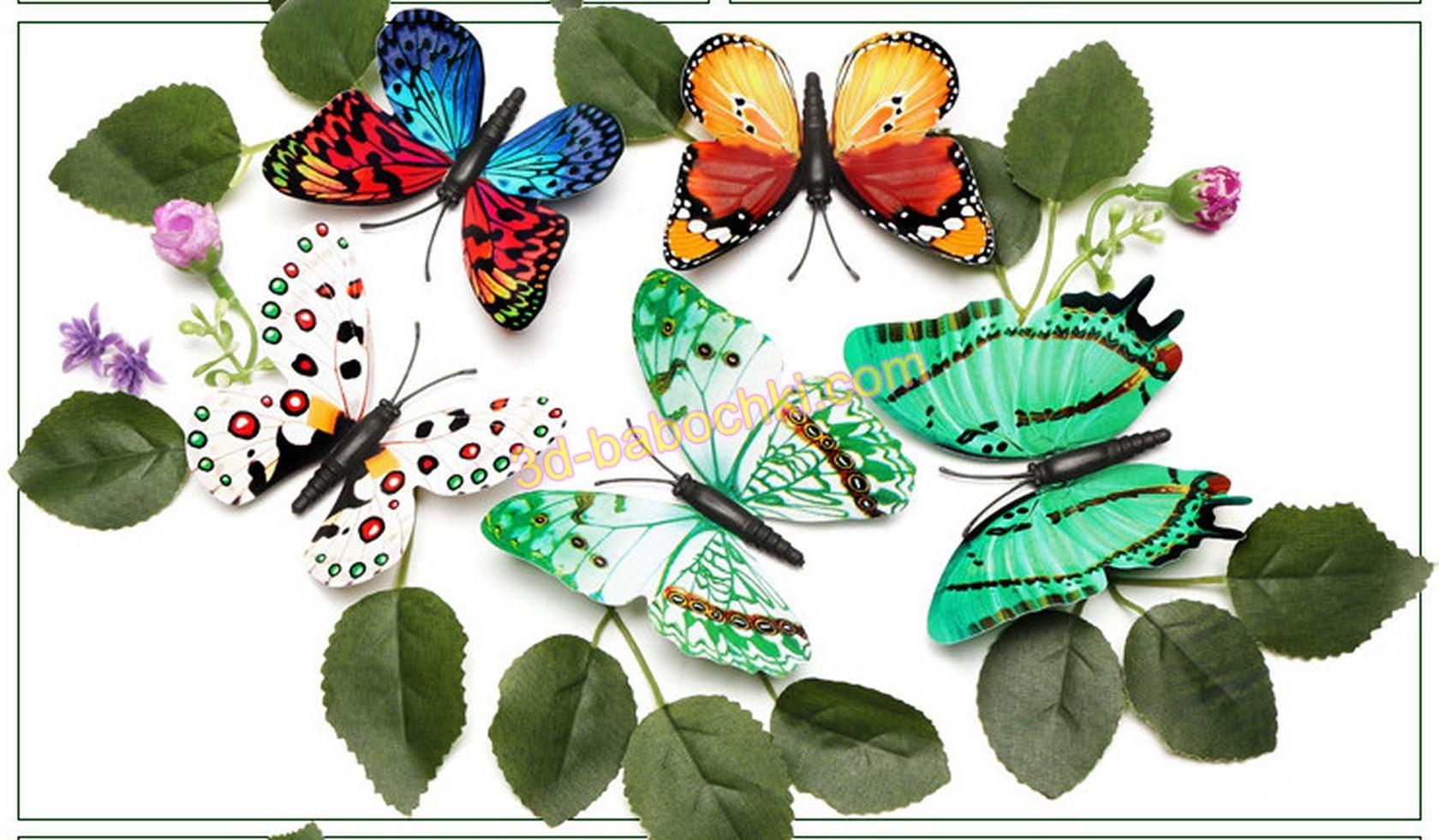 флуоресцентные бабочки