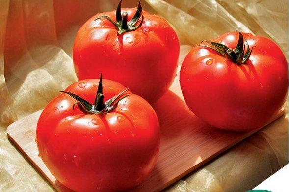 Томат Царин F1 семена томата индетерминантного (Syngenta / Сингента) Царин_F1_семена_овощей_оптом.jpg