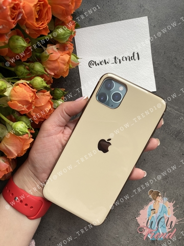 Чехол Iphone 11 Pro Max Glass Silicone Case Logo /gold/