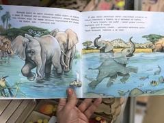 Приключения Слоненка