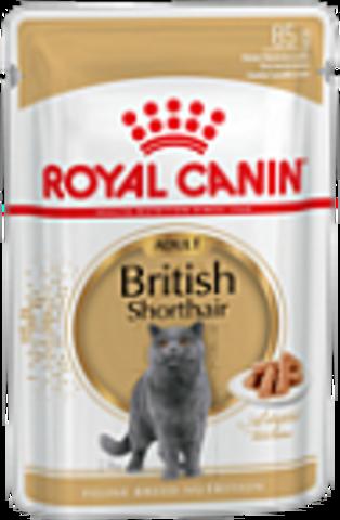 British Shorthair Adult (в соусе) для британских короткошерстных кошек