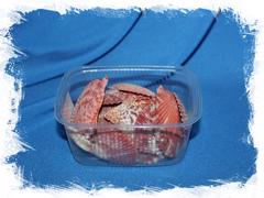 Морские ракушки купить