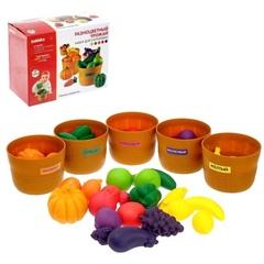 Набор для сортировки Разноцветный урожай Zabiaka 4415058