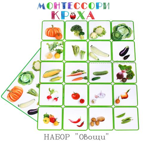 КАРТОЧКИ МОНТЕССОРИ НАБОР «Овощи»