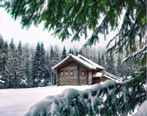 Алмазная Мозаика 20x30 Дом среди зимнего леса (арт. JS20414)