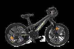Велосипед детский Gestalt G-205 спицы Черный
