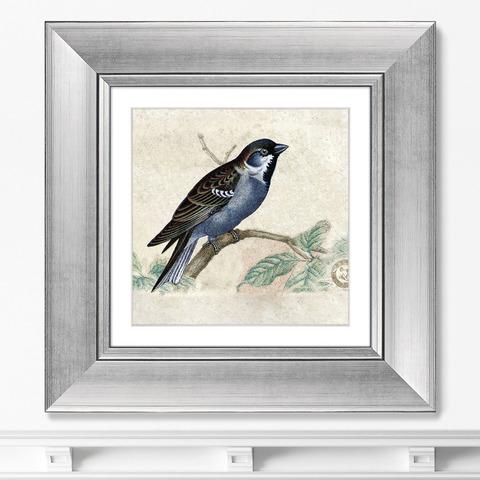 Неизвестен - Птицы, винтажная почтовая открытка №1, 1918г.