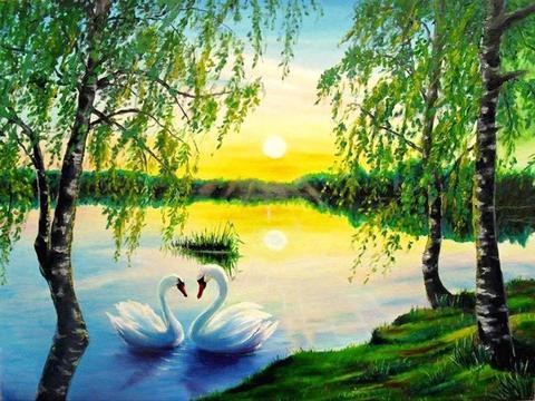 Картина раскраска по номерам 30x40 Пара лебедей на берегу озера