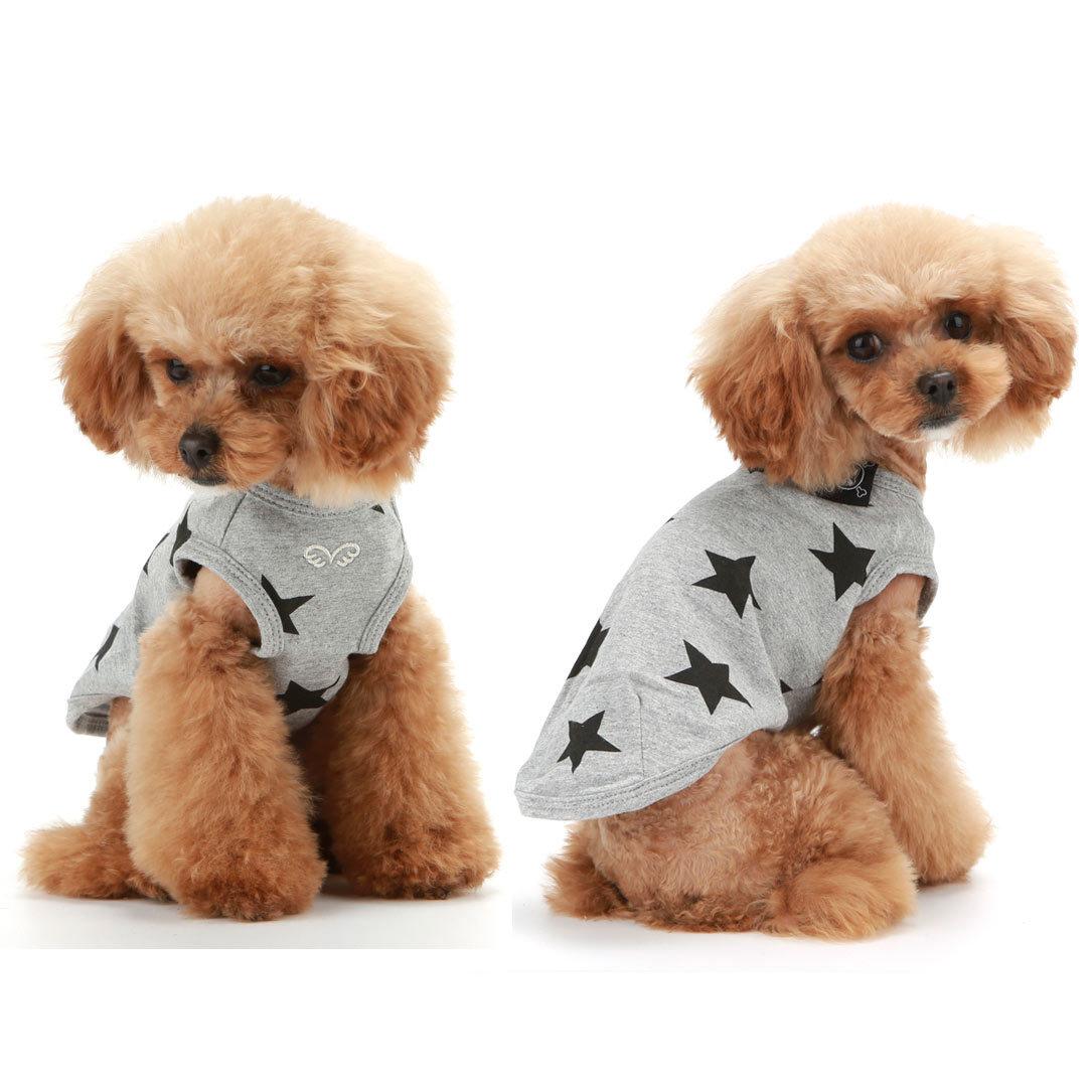 футболки для собак москва
