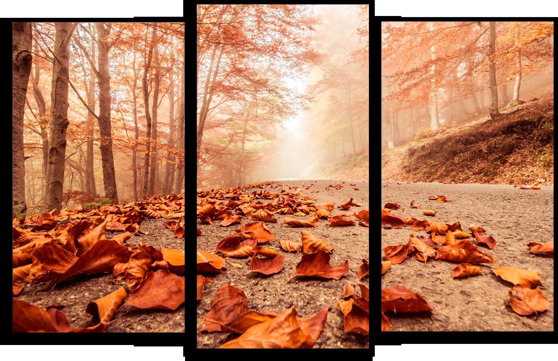"""Модульные картины Модульная картина """"Осенние листья"""" М55.png"""