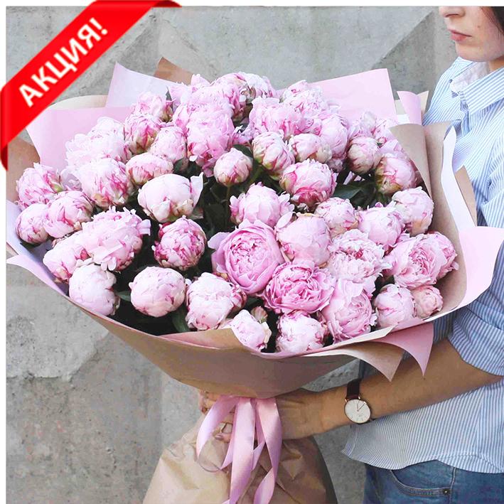 Купить шикарный букет 51 розовый пион Сара Бернар в Перми