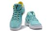 Nike Zoom Kobe 4 Protro 'Green/White'