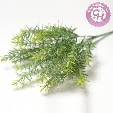 Искусственная зелень Аспарагус с патиной, букет 7 веток, 35 см.