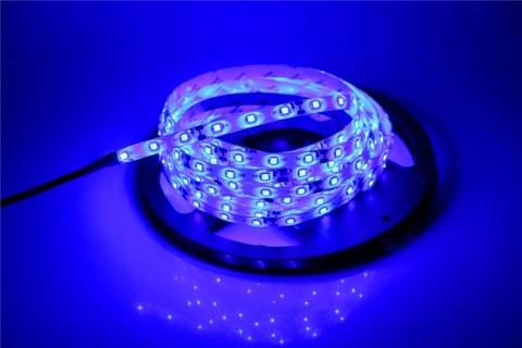 Лента 5050 LED синяя 5 метров