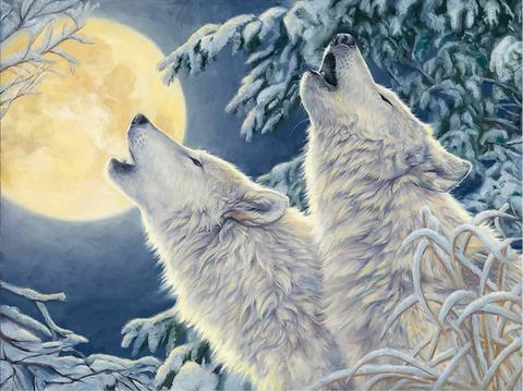 Картина раскраска по номерам 30x40 Два белых волка воют на луну