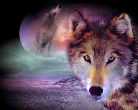 Алмазная Мозаика 40x50 Зов волка (арт. S2828 )
