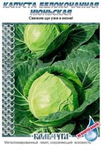 Семена Капуста белокочанная Июньская Кольчуга Е01016