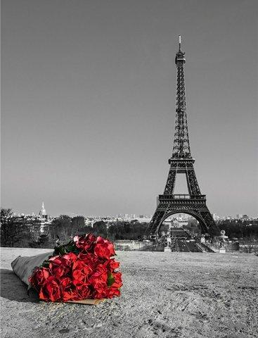 Картина раскраска по номерам 30x40 Букет красных роз на фоне Эйфелевой башни