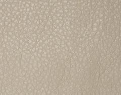 Искусственная кожа Varana cappuccino (Варана капучино)