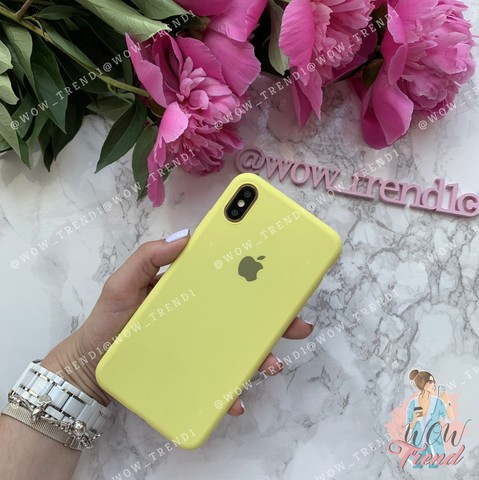 Чехол iPhone XS Max Silicone Slim Case /flash/
